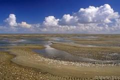 Dieses und weitere Fotos des Vortrags wurden freundlicherweise zur Verfügung gestellt von Dr. Martin Stock: www.wattenmeerbilder.de