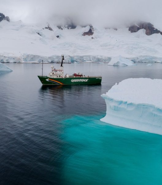 Foto: Christian Åslund / Greenpeace